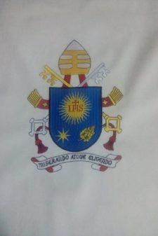 broderie stema papala 2